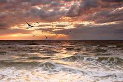 Por do sol nebuloso fotografia de stock royalty free
