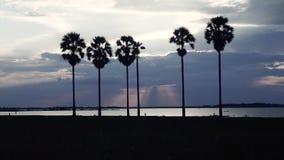 Por do sol nebuloso, por do sol do lago, por do sol filme