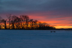 Por do sol nevado Imagem de Stock Royalty Free