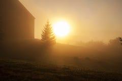 Por do sol nevoento Fotografia de Stock