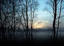 Por do sol nevoento em Teufelsmoor, Alemanha Fotos de Stock Royalty Free