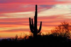 Por do sol no Arizona Foto de Stock Royalty Free
