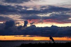 Por do sol no beira-mar Foto de Stock