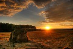 Por do sol no campo Imagem de Stock Royalty Free