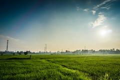 Por do sol no campo Fotos de Stock Royalty Free