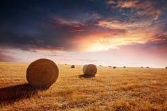 Por do sol no campo do feno Fotos de Stock
