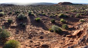 Por do sol no deserto em torno da página em ferradura Arizo da curvatura de Grand Canyon Fotografia de Stock Royalty Free