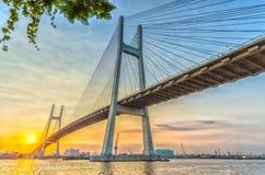 Por do sol no fio de aço da ponte Fotografia de Stock
