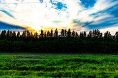 Por do sol no fundo de prados do russo foto de stock