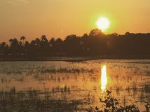 Por do sol no God& x27; s possui o país, Kerala India imagem de stock
