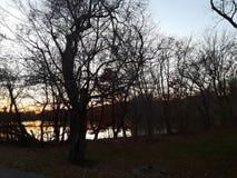 Por do sol no lago na conserva de natureza de Tanglewood Fotografia de Stock