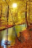 Por do sol no outono adiantado fotos de stock royalty free