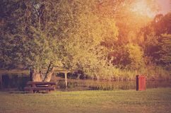 Por do sol no parque Fotos de Stock Royalty Free
