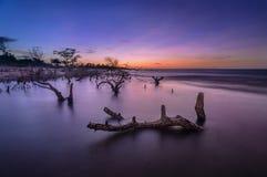 Por do sol no rio Preguiça Imagens de Stock Royalty Free