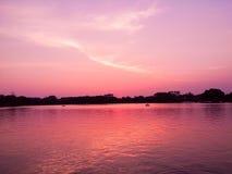Por do sol no rosa Foto de Stock Royalty Free