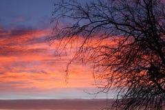 Por do sol no trabalho Foto de Stock Royalty Free