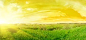 Por do sol no verão Imagens de Stock