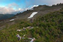 Por do sol norte e nuvens da montanha das cascatas Imagem de Stock