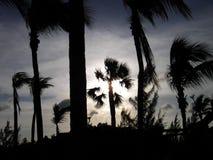 Por do sol nos Bahamas Imagens de Stock
