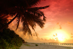 Por do sol nos Maldives imagens de stock royalty free