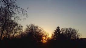 Por do sol O sol atrás das árvores Foto de Stock Royalty Free