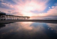 Por do sol pacífico da praia Fotos de Stock