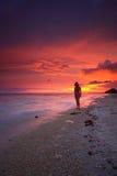 Por do sol pacífico da praia Fotografia de Stock