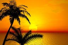 Por do sol. Palmas ilustração royalty free