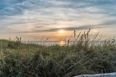 Por do sol pastel sobre a vegetação e o Mar do Norte das dunas foto de stock