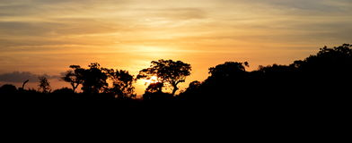 Por do sol perto de Medirigiriya Vatadageya Fotos de Stock Royalty Free