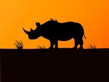 Por do sol preto do fundo da silhueta do rinoceronte do vetor Imagem de Stock