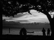 Por do sol preto e branco na praia Imagens de Stock