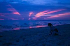Por do sol profundamente roxo Foto de Stock Royalty Free