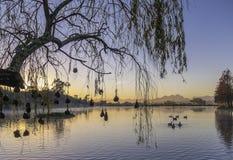 Por do sol rochoso do lago Imagens de Stock