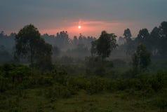 Por do sol romântico sobre Misty Landscape foto de stock royalty free