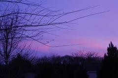 Por do sol roxo Fotos de Stock Royalty Free
