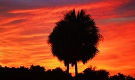 Por do sol roxo/alaranjado Imagem de Stock Royalty Free
