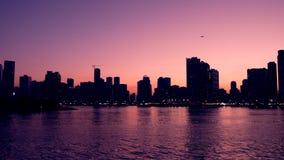 Por do sol roxo na lagoa bonita com skyline Lago e arranha-céus no horizonte Cena da noite da cidade grande video estoque