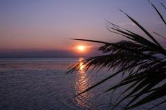 Por do sol roxo na praia fotos de stock