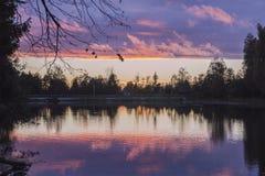 Por do sol roxo sobre o rio Foto de Stock
