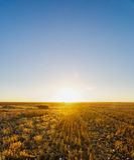 Por do sol rural Imagens de Stock