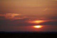 Por do sol sobre a área da urze em Kongenshus em Dinamarca Foto de Stock