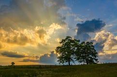 Por do sol sobre a cerca do splitrail, parque nacional de Cumberland Gap foto de stock royalty free