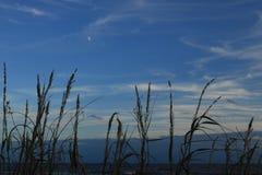 Por do sol sobre a entrada do oceano de Atlantaic fotos de stock royalty free