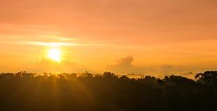 Por do sol sobre a floresta tropical pelo Rio Amazonas em Brasil fotos de stock royalty free