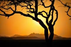 Por do sol sobre montanhas com a árvore com o sol que brilha através das nuvens das montanhas das nuvens foto de stock