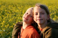 Por do sol sobre o campo da violação Foto de Stock Royalty Free