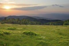 Por do sol sobre o campo verde Imagens de Stock Royalty Free