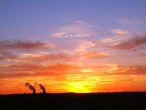 Por do sol sobre o central nuclear Fotografia de Stock Royalty Free