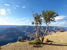 Por do sol sobre o Grand Canyon Fotografia de Stock Royalty Free